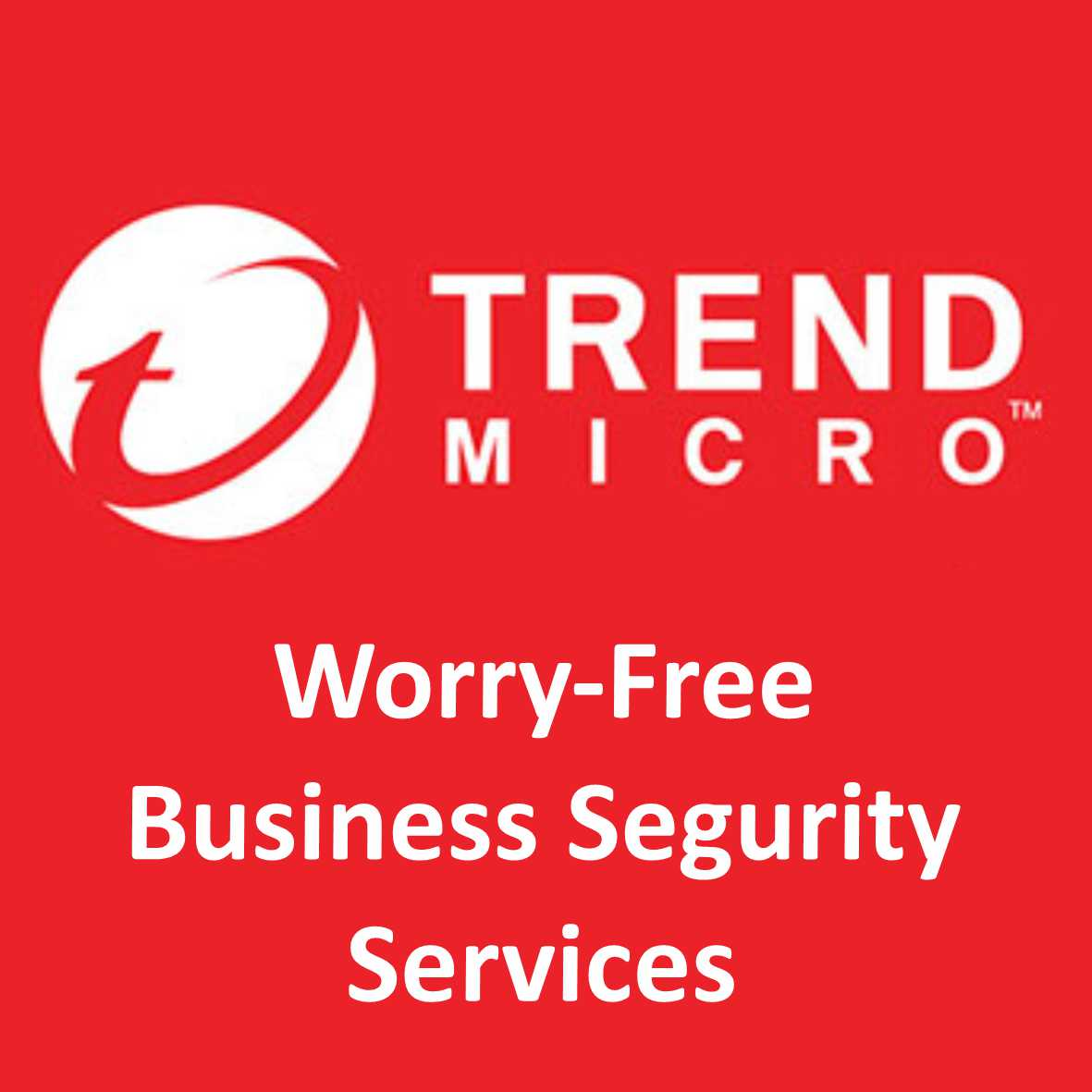 Worry-Free Business Segurity Services